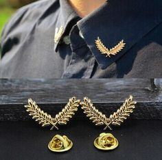 New Fashion jewelry Tree leaf brooches Collar clip gift for women men lovers' wholesale BR74