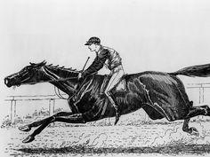 1886 Kentucky Derby winner, Ben Ali.