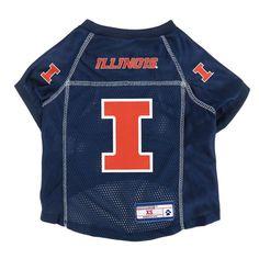 Illinois Fighting Illini Little Earth Pet Football Jersey - XL,