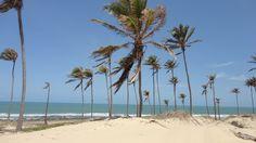 https://pixabay.com/pt/praia-ceará-brasil-78247/