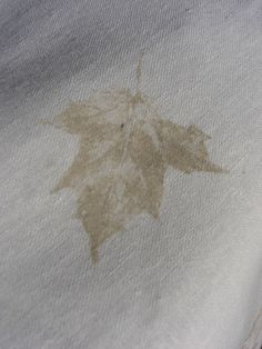 Detail of print.