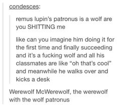 I think Remus is an extremely strong character, he goes through so much pain, but still remains a role model, and a caring person. He is definitely not the average persona of a werewolf