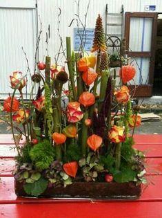 Autumn flower arrangement - lanterns and polygonum Beautiful Flower Arrangements, Floral Arrangements, Beautiful Flowers, Church Flowers, Fall Flowers, Ikebana, Fleur Design, Corporate Flowers, Flower Boutique