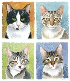 Cat Illustrations by Maggie Swanson