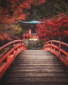 Enchanting autumn colors in Japan. My favorite place for an November phototour! Aesthetic Japan, City Aesthetic, Travel Aesthetic, Japan Nature, Places Around The World, Around The Worlds, Places To Travel, Places To Go, Aurora Borealis