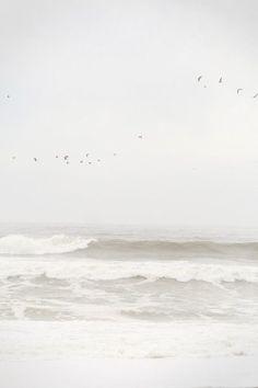 | The Sea |
