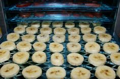 dehydrating fruit- Tips for apples, strawberries, kiwi, bananas, oranges...