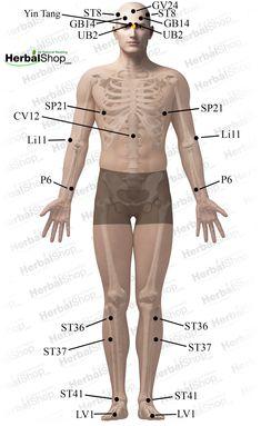 Masseur pro massages guys body
