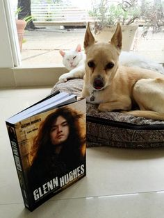 Toto & Hughie getting ready to hear Dad tell stories from his book...