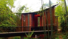 FIRM: West-line studio; PROJECT: Bamboo Gateway; LOCATION: Chishui - Guizhou - China. Gateway and tea pavilion structure in a forested setting that takes advantage of a variety of weather patterns from rain, sun to fog, thus creating for visitors, a stunning range of ephemeral and sensory experiences.