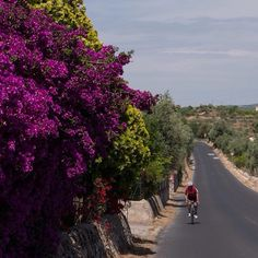 Cyclist on the road to Noto