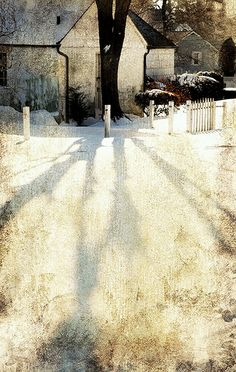 Upstate NY Snowlight - texturized photograph taken by a New York based photographer Diana Lee -- reminiscent of Andrew Wyeth's style.