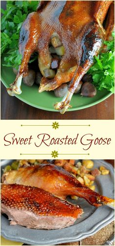 Sweet Roasted Goose is a tried and true recipe for a succulent goose with crispy skin and tender meat seasoned with apple orange and potato stuffing. Top with Cumberland Sauce. Roast Goose Recipes, Duck Recipes, Meat Recipes, Chicken Recipes, Cooking Recipes, Game Recipes, Cooking Ham, Cooking Steak, Recipies
