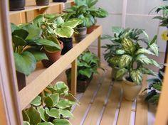 Dollhouse Miniature plants by 2015 IGMA Fellow Carolyn Mohler Kraft