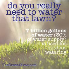 5 Ways to Conserve Water This Summer