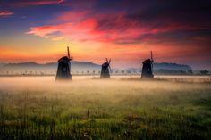 Foggy morning by Jaewoon U on 500px