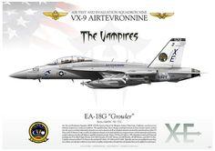 EA-18G Growler VX-9