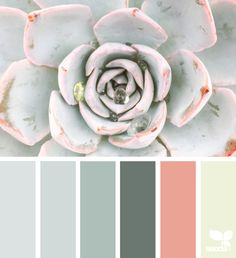 sea glass Archives | Design Seeds