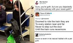 Twitter loves image of goth with a RAVEN on her knee | Daily Mail Online
