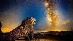Another monster is awakened by the Milky Way hovering over Borrego Springs.