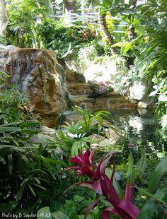 Rainforest inside Mirage Hotel, Las Vegas