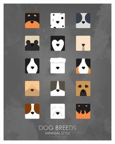 Make one special photo charms for your pets, compatible with your Pandora bracelets. Minimalist Dog Breeds Poster by ~doopercreative Dog Illustration, Illustrations, Portrait Illustration, Dog Logo Design, Dog Icon, Dog Branding, Dog Poster, Best Dog Breeds, Dog Cat