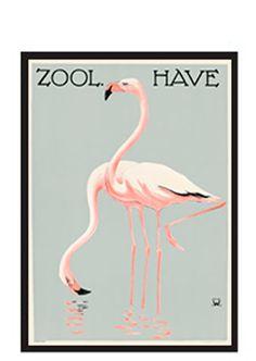 Flamingoer / Zoo 11 plakat - Køb online hos Permild & Rosengreen