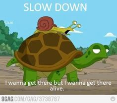 The tortoise is too fast for the snail.