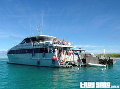 We went out to Lady Musgrave Island on our holiday.  The #travel out to the island was a little rough, but once we anchored it was all ok.  What a great day out for us and the kids.  Read more here about the day we had....  #holiday #travelling #trip #SeventeenSeventy
