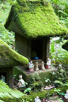 Moss covered world by Giant Ginkgo/Sasuke Inari Shrine,Japan