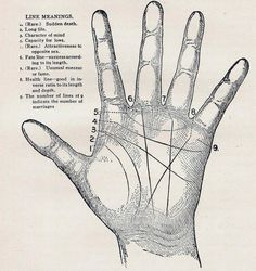 Palmistry truth or hoax pinterest palm palm hand and shorts palm reading hand lines meaning read how to get as much as you want out of a 100 free online psychic chat m4hsunfo