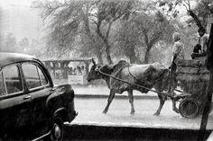 fueron calles humanas, hasta que la superpoblación y la industria automovilística las convirtió en ardiente asfalto, en peligrosas cuchillas afiladas...K.B.C. Raghu Rai