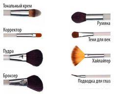 Если вдруг забрела в магазин косметики и не хочется спрашивать, какая кисточка тебе нужна для нанесения конкретной части макияжа, то просто воспользуйся этим