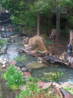 Angle two Ponds, Aquarium, Aquarius, Fish Tank, Pools