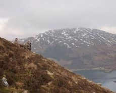 Getting a beast off the hill at Glenshiel #stalking #glenshiel #scotland http://www.ardmoor.co.uk/blog/2015/january/stalking-at-glen-shiel