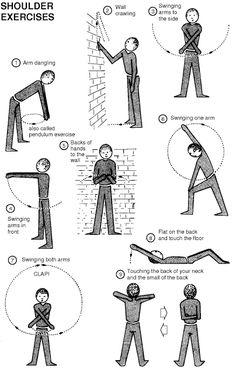 Exercises handout pt shoulder on pinterest frozen shoulder rotator