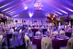Troon North Wedding: Victoria and Shaun