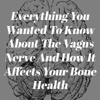 Everything You Wanted To Know About The Vagus Nerve And How It Affects Your Bone Health