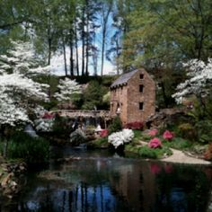The Old Mill In Springtime