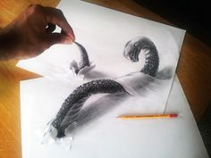 Artist Ramon Bruin is taking hyperrealistic drawings to another dimension. The third dimension to be exact.    The Dutch illustrator is creating realistic 3D renderings of snakes, birds and bridges using a pencil, paper and what we imagine is a vivid imagination. From creeping insects to sprawling structures, Bruin draws impressive cartoons that seem to jump right off the paper.