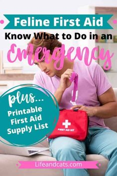 Are you prepared to give a cat first aid in a crisis? Get prepared so you aren't caught in an emergency wishing you had the right supplies and skills. Information About Cats, First Aid Tips, Essential Oil Safety, Kitten Care, Cat Care Tips, Cat Behavior, Cat Grooming, Cat Health, Health Problems