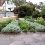 Trying to sell your home? Kerb appeal is a great asset?