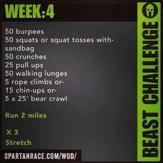Spartan Training: Beast Challenge (Week 4)