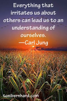 "So, so true! ""Everything that irritates us about others can lead us to an understanding of ourselves."" —Carl Jung"
