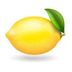 高級感があるレモンのイラスト