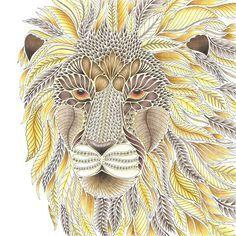 Amazon Hola Angel Majestic Animals Coloring Collection 9781497201446 Angelea Van Dam Libros