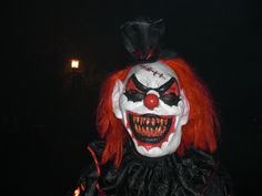 Scary | now love the zoo, I may even love scary clowns or being in a Coffin ...