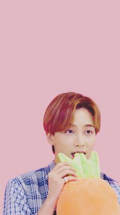 Woozi, Wonwoo, Seungkwan, Kpop, Vernon Chwe, Carat Seventeen, Jeonghan Seventeen, Seventeen Wallpapers, Precious Children