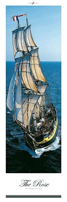 Le trois-mâts HMS Rose mw