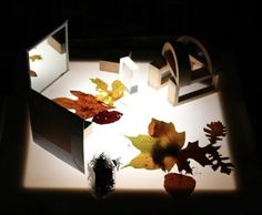 """Reflections on the light table at Richland Academy ("""",)"""